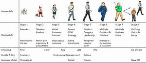 Human Growth And Development Stages Of Life