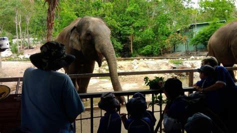 zoo charity drive open garden