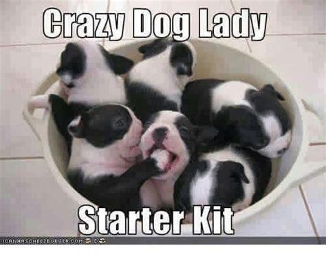 Crazy Dog Lady Meme - crazy dog lady starter kit crazy meme on me me