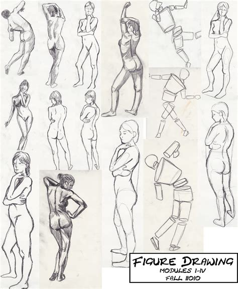 figure drawing exercises    cannibalpineapple