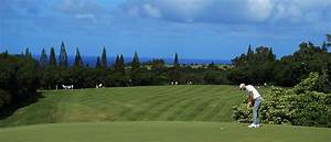 Golf for Maui Charities