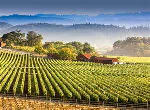 wine country pictures wine country san francisco ca