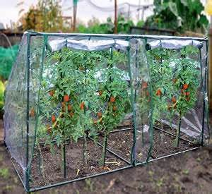Tomatenzelt Selber Bauen : tomatenhaus g nstig kaufen oder selber bauen gew chshaus profi ~ Eleganceandgraceweddings.com Haus und Dekorationen