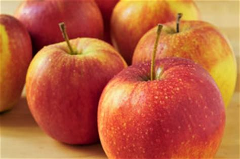 braeburn apfel apfelbaum anbau pflege geschmack und