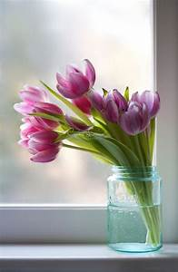 Tiffanys Tulips - Fine Art Photography - Art Print ...