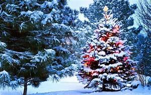 Weihnachten In Hd : hintergrundbilder weihnachten winter hd hintergrundbilder ~ Eleganceandgraceweddings.com Haus und Dekorationen