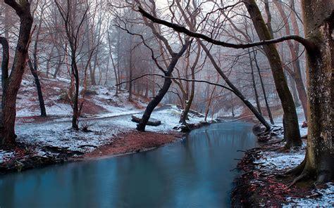 winter landscape calm mountain river bare trees