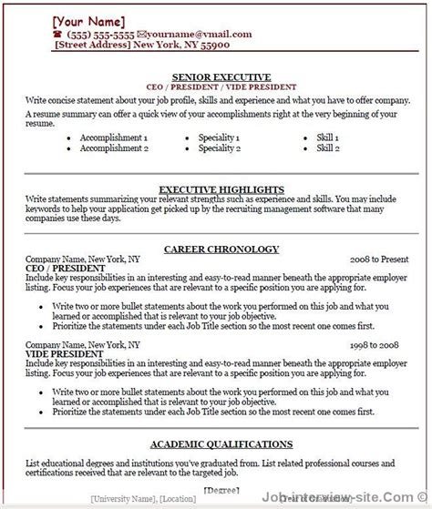 Professional Ceo Resumes by Free 40 Top Professional Resume Templates