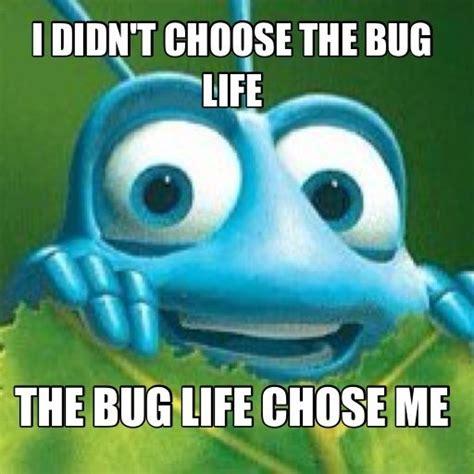 Bug Memes - a bug the o jays and mom on pinterest