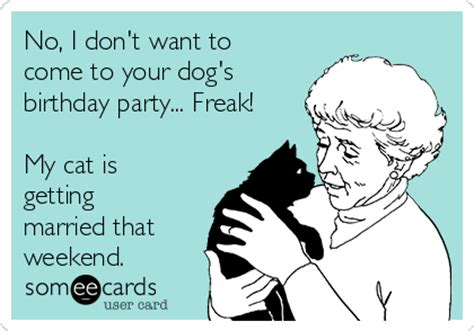 No, I Don't Want To Come To Your Dog's Birthday Party