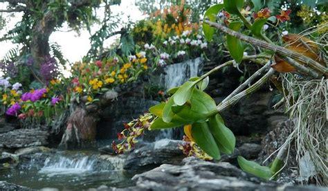 Botanischer Garten Singapur by Singapore Botanic Gardens Worldatlas