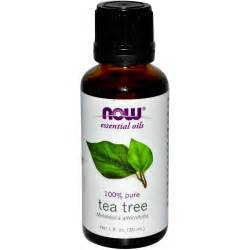 About Tea Tree Oil Pictures