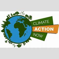 Ahora Es El Momento De Actuar Contra El Cambio Climático Jmagreen