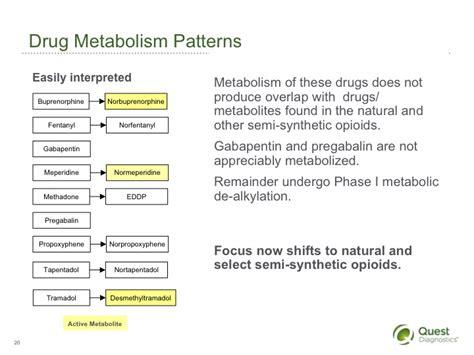 interpreting opiates drug testing