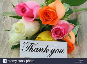 Thank you note and colorful bouquet of roses Stock Photo ...