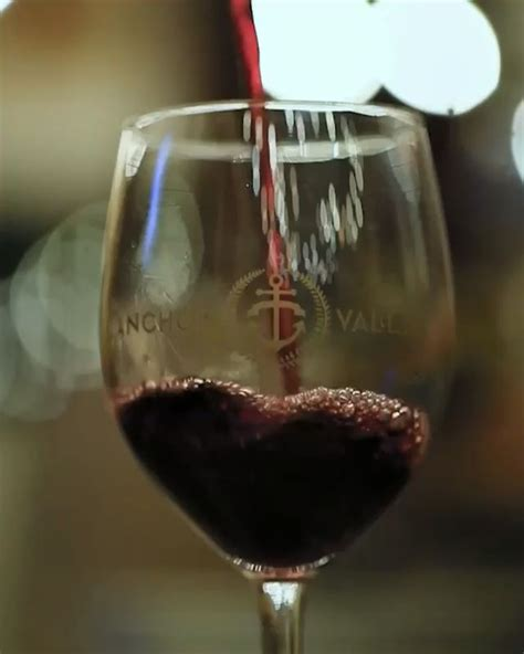 Its so easy to make mango wine at home. Red Wine on My Time! Video | Wine photography, Wine ...
