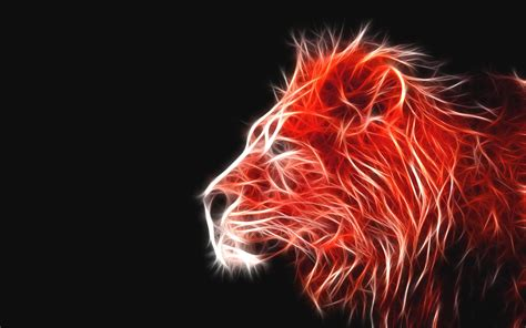 Images Of 3d Fire Lion Wallpaper Golfclub