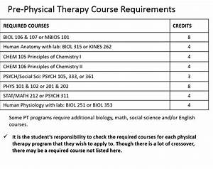 Pre-Physical Therapy | WSU Health Professions Student ...