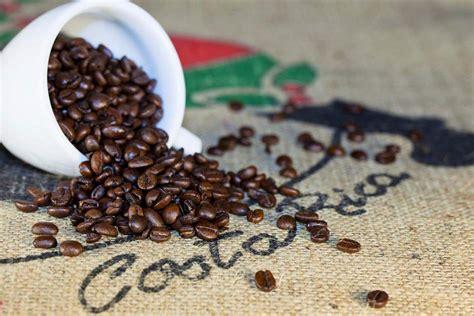 4.3 morning hills coffee, costa rica la rosa green unroasted coffee beans. Costa Rican coffee beans. Photo: Shutterstock