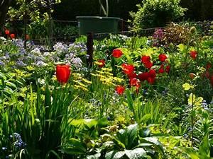 Garten Im März : gartenarbeit im m rz garten know ~ Lizthompson.info Haus und Dekorationen