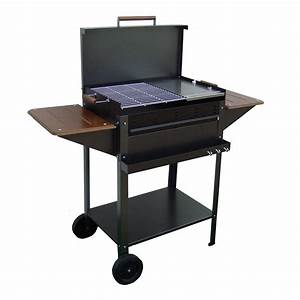 Barbecue Gaz Et Charbon : barbecue charbon ou bois ~ Dailycaller-alerts.com Idées de Décoration