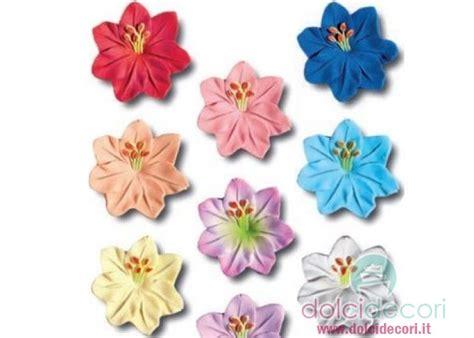 fiori le viole viole in fiore per torte pasta di zucchero