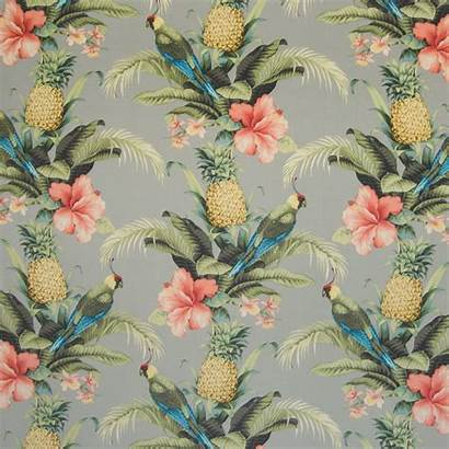 Fabric Tropical Upholstery Fabrics Outdoor Gray Kovifabrics