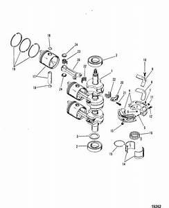 Honda Elite 50cc Scooter Engine Diagram  Honda  Free Engine Image For User Manual Download