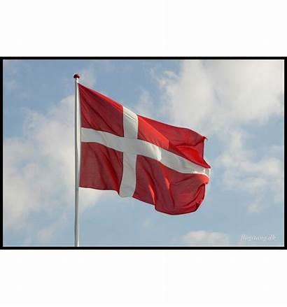 Flag Dannebrog Flagstang Dk