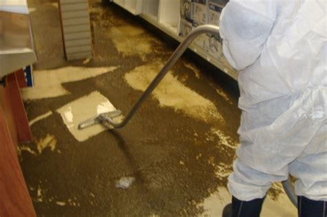 sewage backup cleaning toronto drain and sewer backup