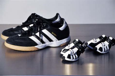 adidas sportswear  sneakers  small dogs fun pet