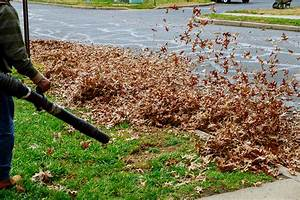 7 Ways To Winterize Your Landscape This Fall
