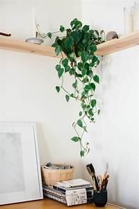 étagère D Angle Murale : etagere murale bois design ~ Dailycaller-alerts.com Idées de Décoration