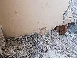 Wie Erkennt Man Asbest : asbest ratgeber hintergr nde vorkommen sanierung und entsorgung ~ Orissabook.com Haus und Dekorationen