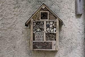 Nichoir A Insecte : nichoir pour oiseaux et h tel insectes au lpl ~ Premium-room.com Idées de Décoration