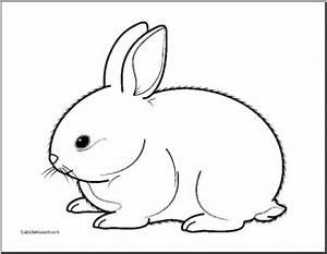 Rabbit cliparts