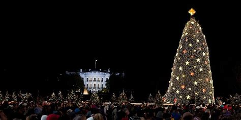 national christmas tree lighting 2013 wttw