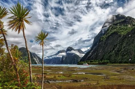 Who Owns The Winter Park Scenic Boat Tour by Top 10 Things To See And Do In New Zealand Places To See