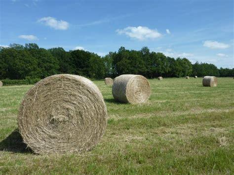 chambre agriculture indre analyses de fourrages 2013 apportez vos fourrages et