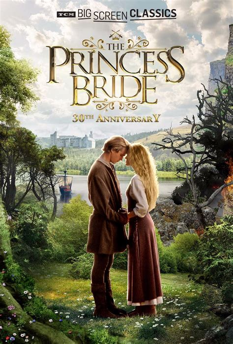 5 Ways to Celebrate the 30th Anniversary of The Princess ...
