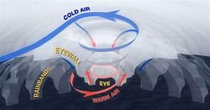 U0026quot It U2019s A Hurricane Honey  U0026quot  Hurricane Preparedness Week