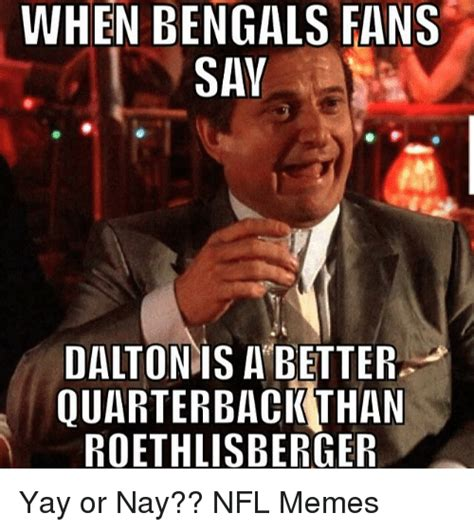 Bengals Memes - when bengals fans say dalton is a better quarterback than roethlisberger yay or nay nfl memes