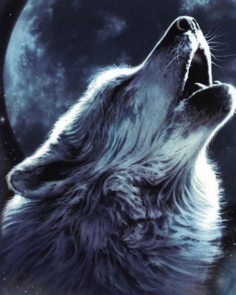 le loup tatouage animaux et loups