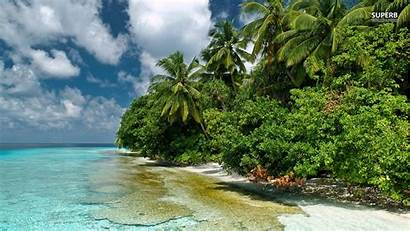 Beach Wallpapers Summer Lagoon Fiji Trees Island
