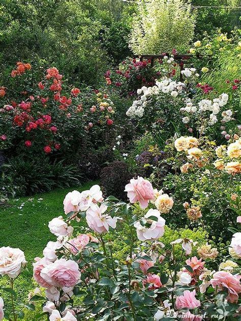 1551 Best Delightful Gardens Images On Pinterest Flowers