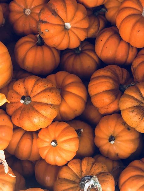 Aesthetic Thanksgiving Wallpaper by Aesthetic Fall Background Fall Backgrounds In 2019