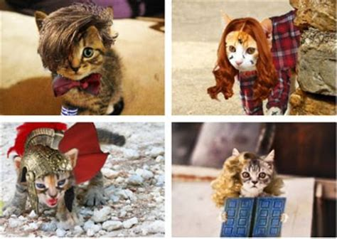 Siskoid's Blog Of Geekery Cats Of The Geek #123 Doctor