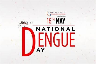 Dengue National Fever Mosquito Many Health Every