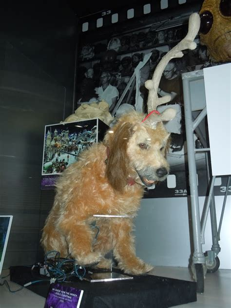 Animatronic Halloween Props Uk by Hollywood Costumes And Props Max Animatronic Dog