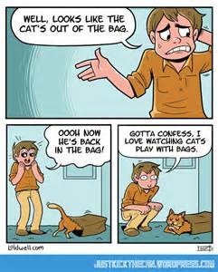 Funny Cartoon Cat Comics